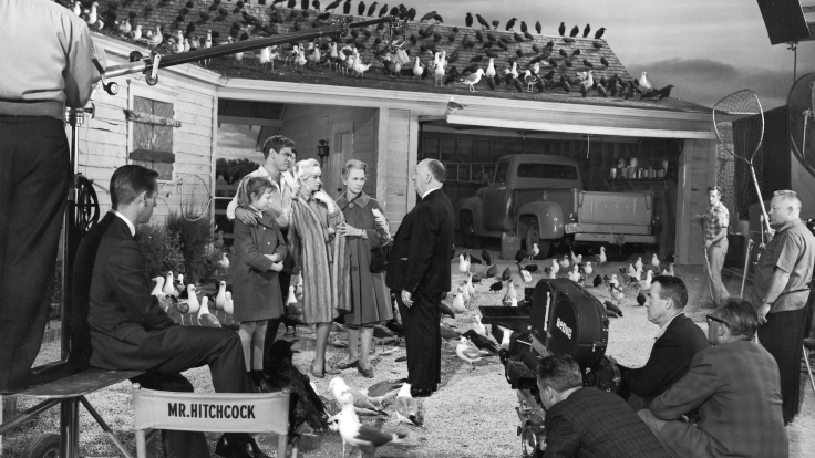 photo-tournage-coulisse-cinema-TheBirds-04